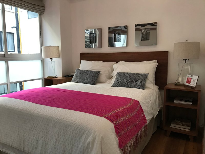 Habitacion en colonia del valle, vacation rental in Mexico City