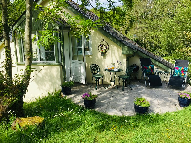 Frogmill Studio, holiday rental in Yeoford