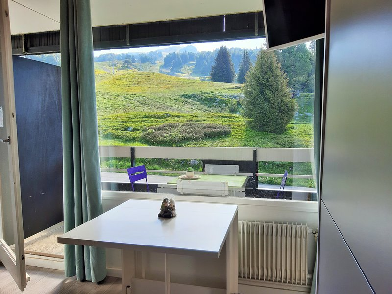 Nice studio - 100 m from the slopes, alquiler de vacaciones en Chamrousse