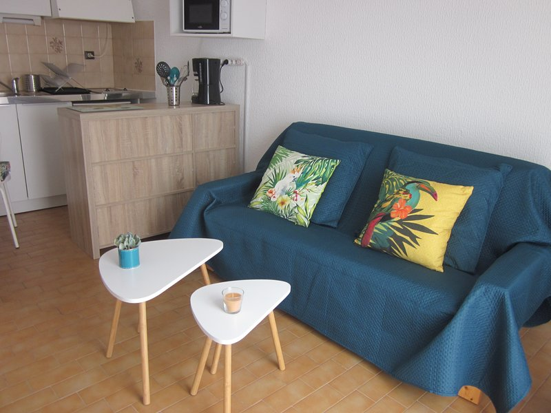 STUDIO MEUBLE PALAIS DES CONGRES, holiday rental in Peyrestortes