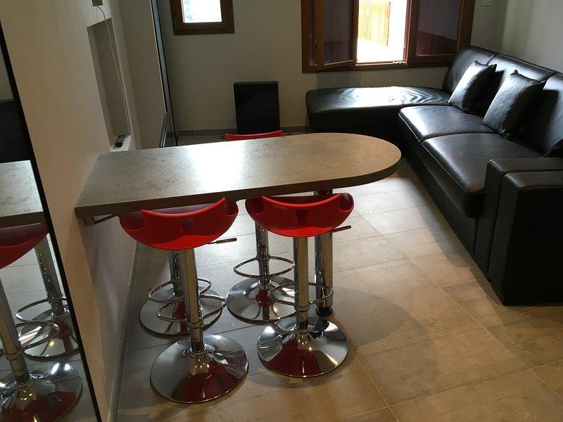 Appartement d'une pièce au coeur d'Evian-les-bains, holiday rental in Evian-les-Bains