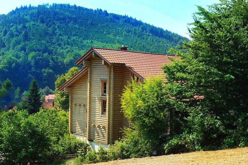Villa Ecologica - für Familien und Freunde, location de vacances à Sinsheim
