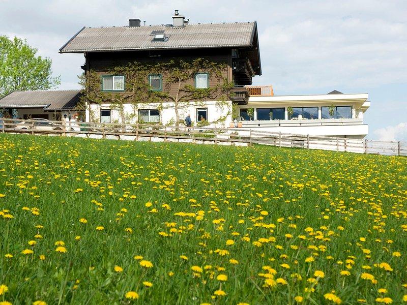 Mitteregg (MII350), holiday rental in Hollersbach im Pinzgau