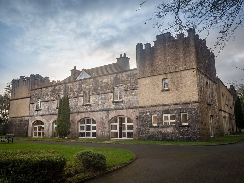 No 4 Old Manor Ballynahinch - Traditional and yet modern apartment in a breathta, holiday rental in Cashel