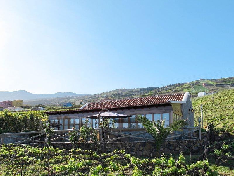 La Perdoma (LAO131), vacation rental in La Orotava