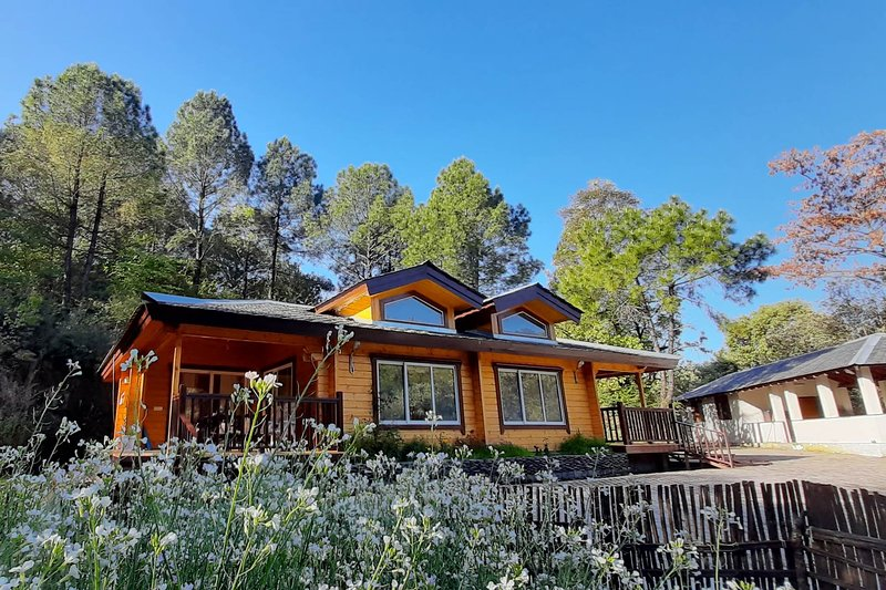 Serendipity by Vista Rooms, alquiler de vacaciones en Kangra District