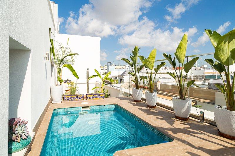 San Lorenzo. 3 bedrooms, optional parking, terrace, private pool, aluguéis de temporada em Valencina de la Concepcion