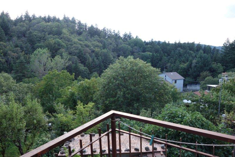 Trilocale sul Monte Amiata, holiday rental in Vivo d'Orcia