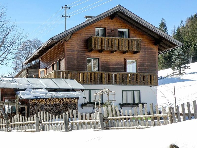 Knaushäusl (RMU204), holiday rental in Radstadt