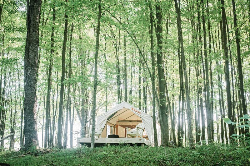 Tentrr Signature Site - Hollow Tree Camp, holiday rental in Honesdale