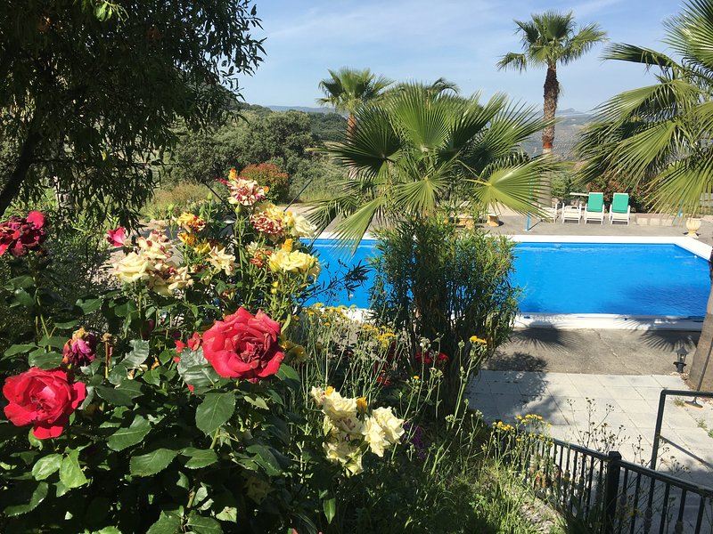 Tranquil, Restful, Cottage with Exclusive use of Pool close to Zagra and Granada, holiday rental in Riofrio