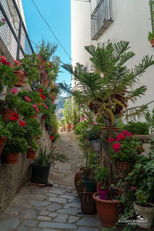 Una de las calles del pueblo