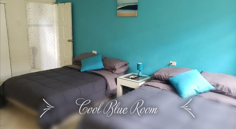 Cool Blue Room with private bathroom, hot water, tv, ac and free airport pick up