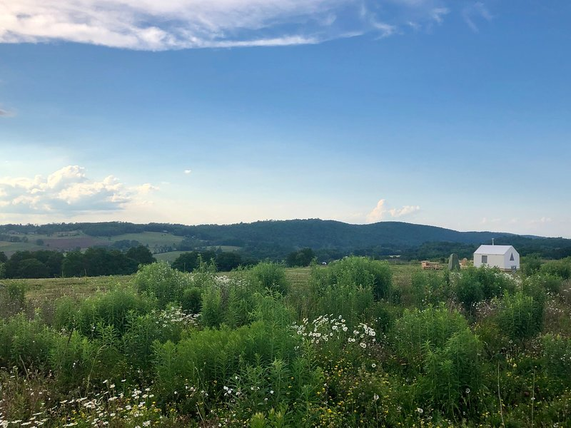 Tentrr Signature Site - Hudson Valley Hilltop 1 UPDATED ...