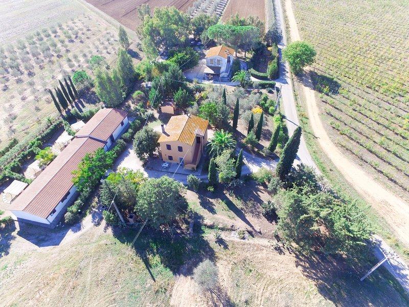 Le Selvacce (GIU150), location de vacances à Giuncarico