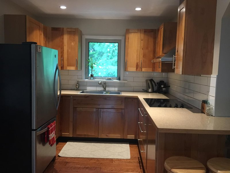 open concept kitchen with cook plate, microwave, coffee maker, fridge & microwave