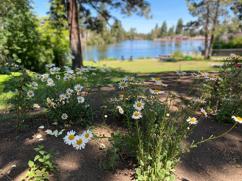 On River Bend, holiday rental in Tumalo