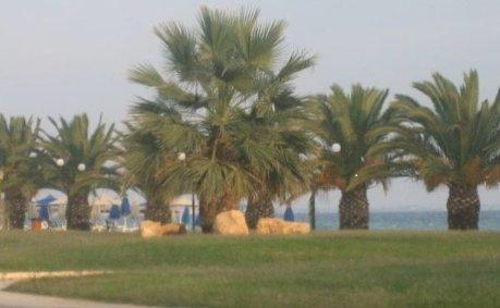 μπροστά στη θάλασσα ήσυχο μέρος ανάμεσα στο κέντρο Ν.πλαγίων και  Ν.φλογητων, location de vacances à Nea Triglia