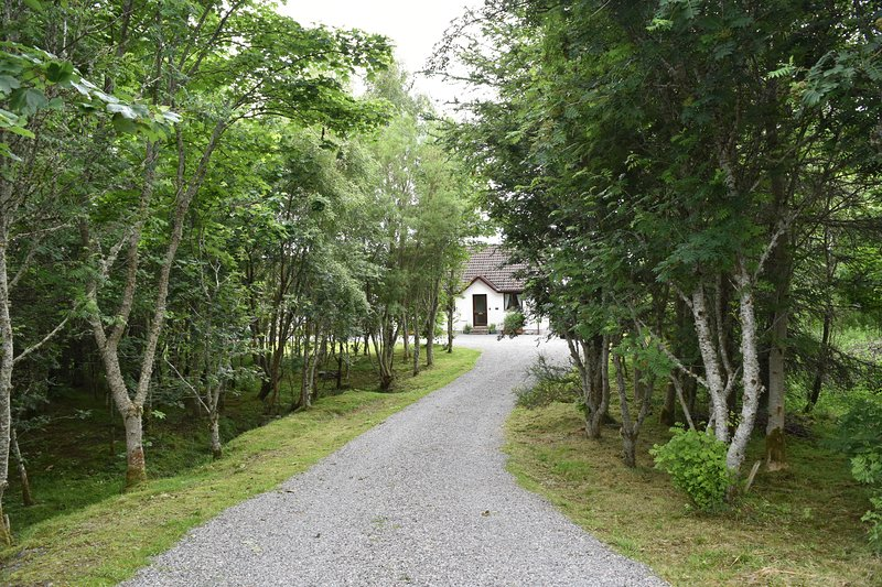 2 bed bungalow in quiet wooded location, casa vacanza a Lairg
