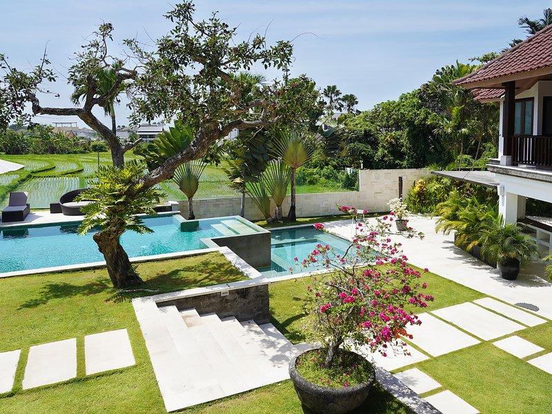 Villa Manis - Pool and villa