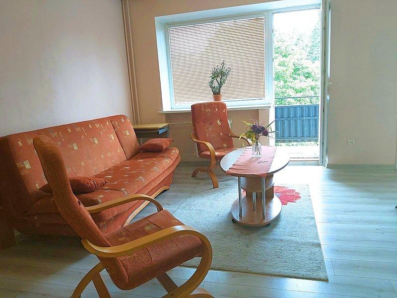 City Center - Vytenio - 2 rooms, location de vacances à Trakai