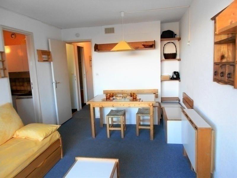 SEJOUR AGREABLE DANS STUDIO CABINE DE 28 M², holiday rental in Le Corbier