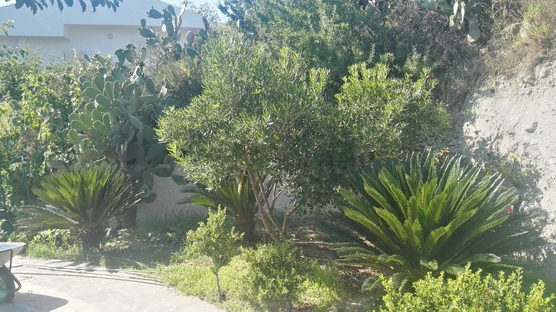 Meravigliosa villa indipendente, vacation rental in San Nicolo
