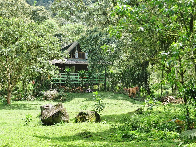 Mindo Eco Chalet with Natural Pool and Waterfalls, holiday rental in Mindo