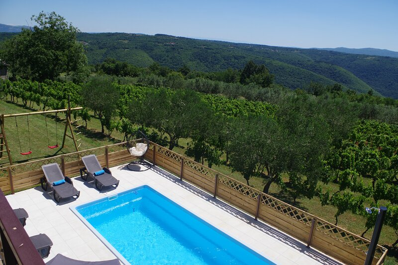 Apartment Jadranka with private pool and wonderful view, vacation rental in Zminj