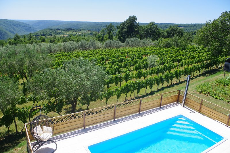 Apartment Jadranka with private pool and wonderful view, holiday rental in Zminj