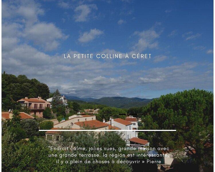Maison de vacances avec vues 'la petite colline', holiday rental in Les Hauts de Ceret
