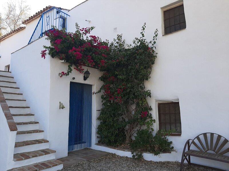 Attico, Cortigo Los Montes, holiday rental in Vinuela