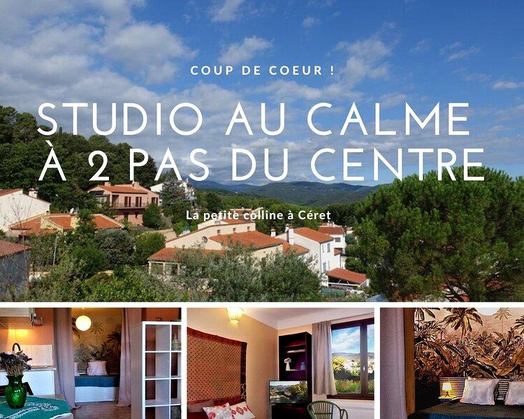 la tranquillité à 2 pas du centre de Céret, holiday rental in Les Hauts de Ceret