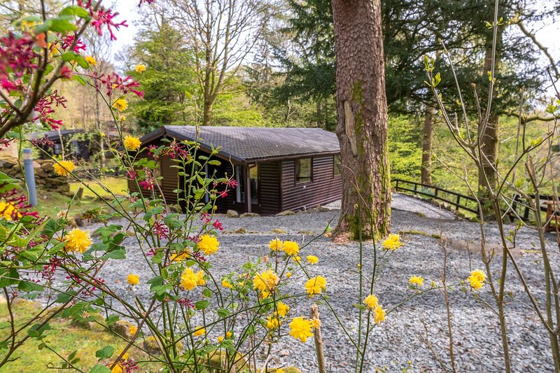 Styhead Tarn Lodge - 3-Bedroom Lake District Lodge on a private estate with leis, holiday rental in Elterwater