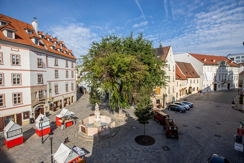 Best View Apartment no.1, holiday rental in Karlova Ves