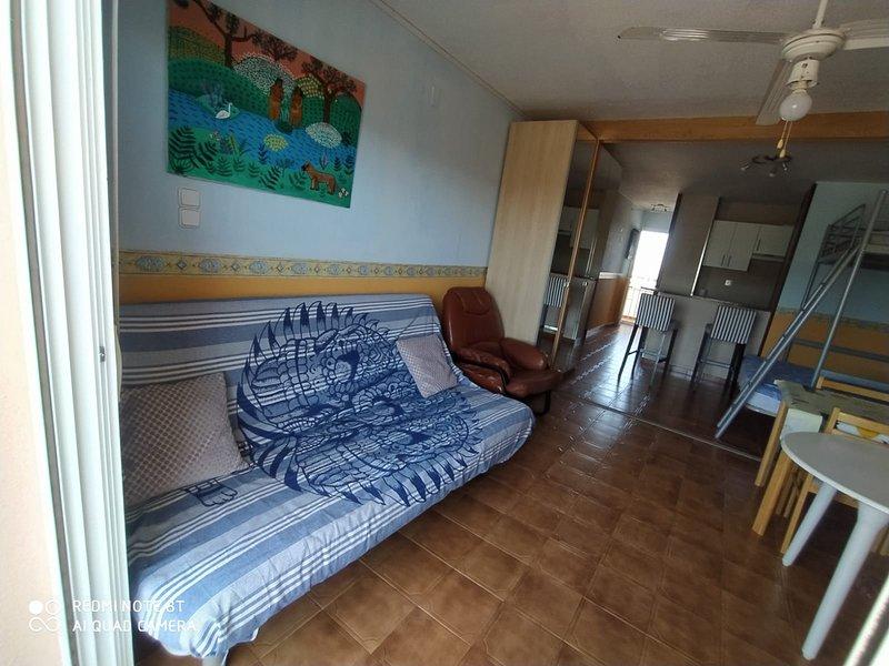 Sofá cama doble . Armario y vista parcial del apartamento