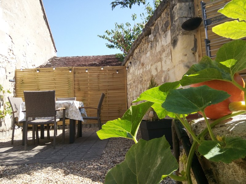Mini Tribu de Beauval 3*** 2/6 pers, vacation rental in Saint-Aignan
