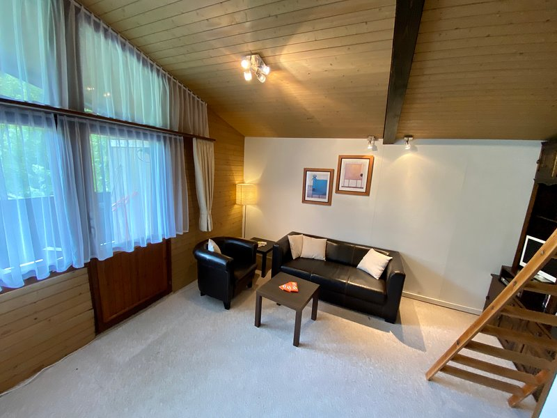 gemütliche Wohnung mit fantastischer Kulisse, location de vacances à Rapperswil