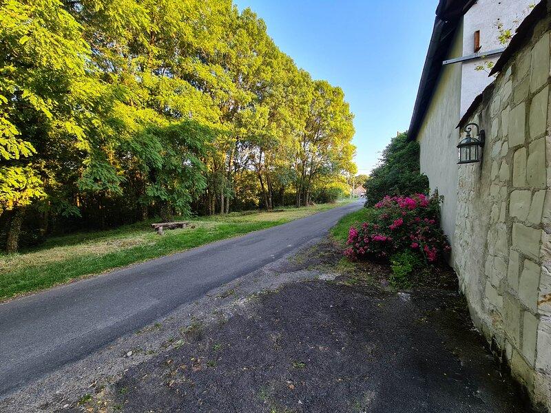 16 visites à moins de 20km, le calme, la nature !, holiday rental in Rigny-Usse