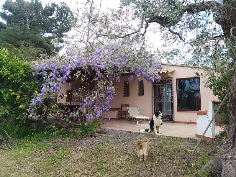 Casa rustica Lentini, vacation rental in Collesano