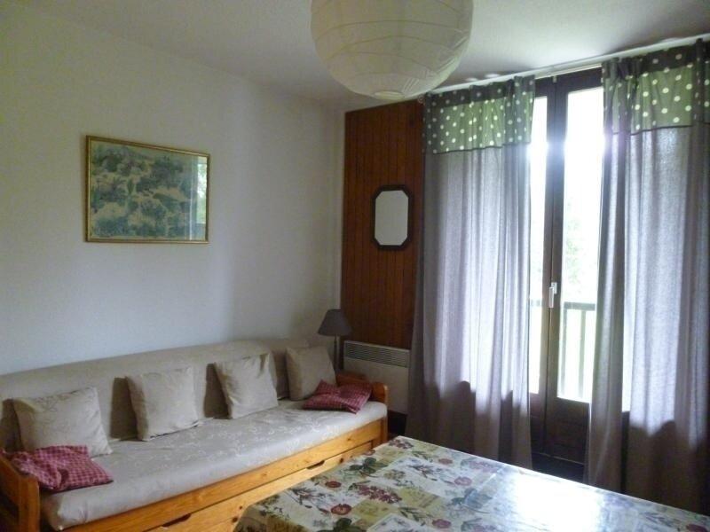 joli studio avec cabine séparée, holiday rental in Flaine