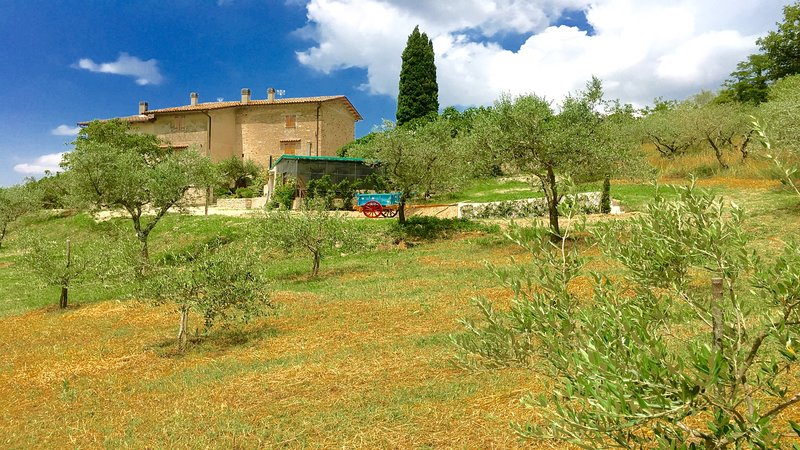 DETACHED VILLA / sleeps 8 / WiFi / 2 kitchens / 4 bedrms / 4 bathrms / Rome 1 hr, vacation rental in San Gregorio