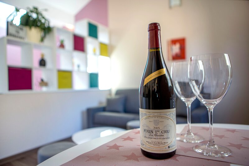 Appart Grands Crus entre Dijon et Beaune Noisot 1, holiday rental in Vosne-Romanee