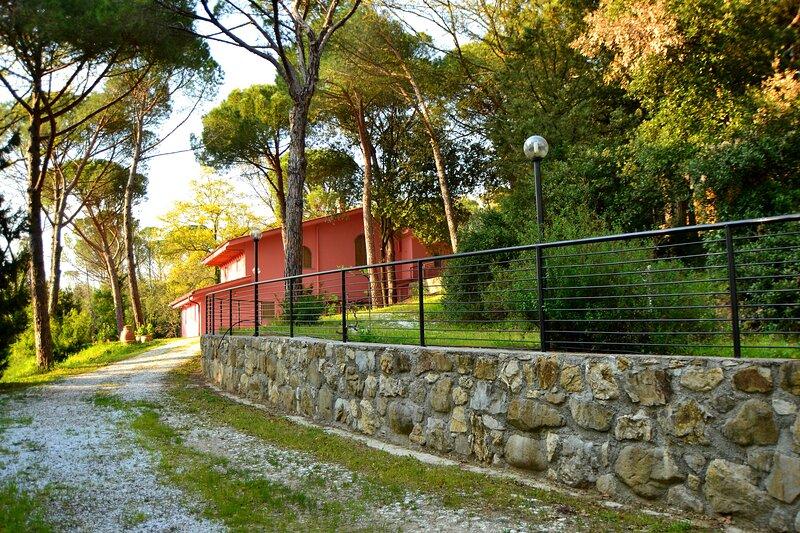 Agriturismo Poggio al Pino - holiday house, holiday rental in Poggio alla Malva