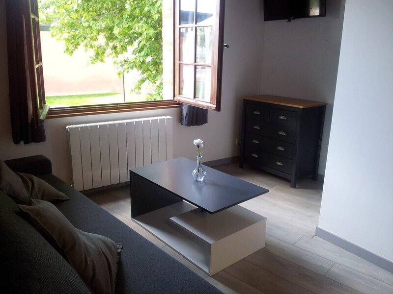 Studio tout confort plein-centre, holiday rental in Verfeil