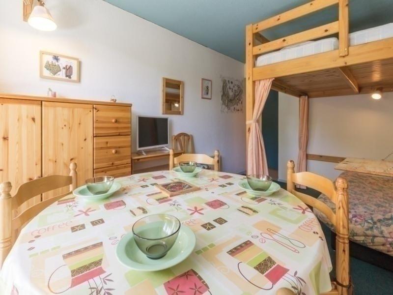 STUDIO DE 22 M² AVEC VUE SUR LES PISTES BAS ETAGE, holiday rental in Le Corbier
