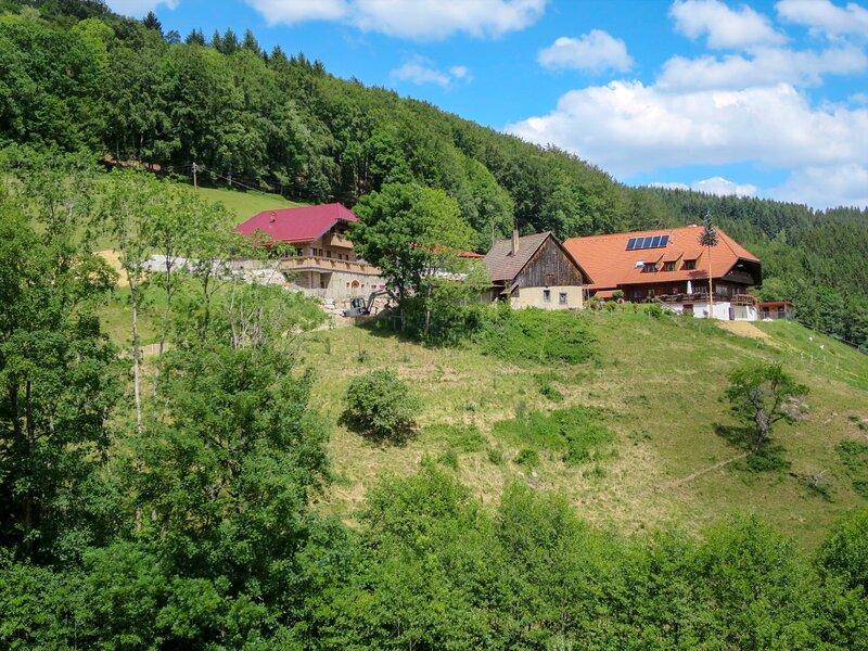 Schmalzenhof (HFT101), holiday rental in Zell am Harmersbach