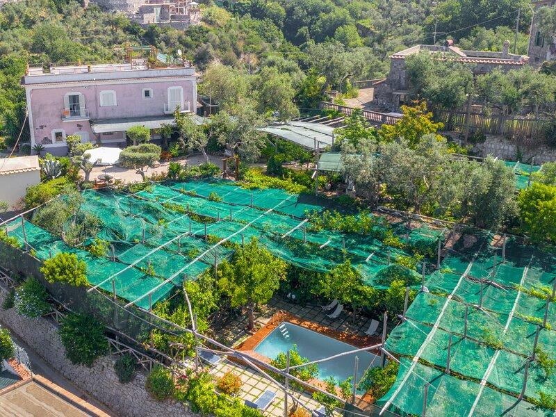 Emi, holiday rental in Schiazzano