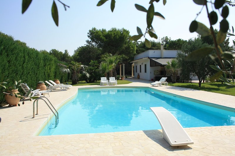 Amazing villa with swimming-pool, holiday rental in Erchie