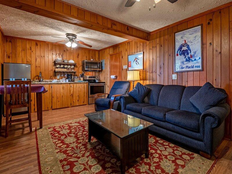 1 Br:  Stemwinder 6B, holiday rental in Slatyfork
